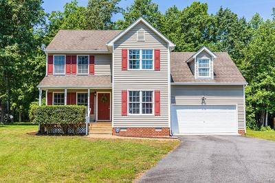 Chesterfield Single Family Home For Sale: 7506 Ground Fern Place