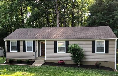 North Chesterfield Single Family Home For Sale: 9354 Greatbridge Road