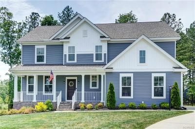 Chesterfield Single Family Home For Sale: 8706 Level Gauge Lane