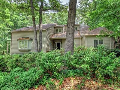 Henrico Single Family Home For Sale: 2419 Islandview Drive