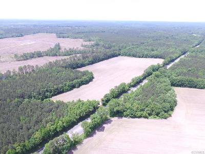 Land For Sale: 40 Ac County Drive