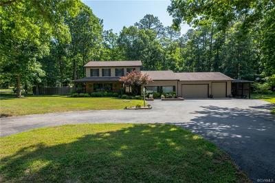 Chesterfield Single Family Home For Sale: 9801 Third Branch Drive