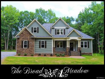Amelia Single Family Home For Sale: 17870 Broad Meadow Drive