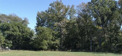 Land For Sale: 1501 White Mountain Drive