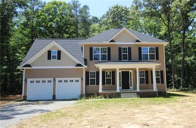 Henrico Single Family Home For Sale: 8800 Mansfield Woods Drive
