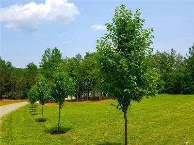 Powhatan County Single Family Home For Sale: 2139 Haleford Court