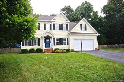 Hanover County Single Family Home For Sale: 9097 Lunette Lane
