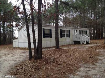 Sussex County Single Family Home For Sale: 14151 Bethel Church Road