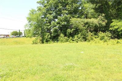 Henrico Land For Sale: 12100 W Broad Street