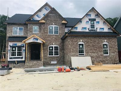 Henrico County Single Family Home For Sale: 11084 Ellis Meadows Lane