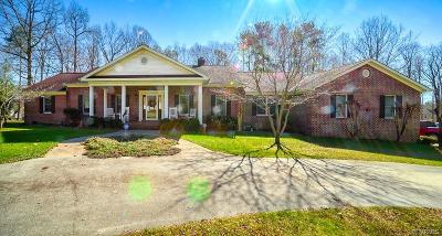 Single Family Home For Sale: 20019 Oak River Court