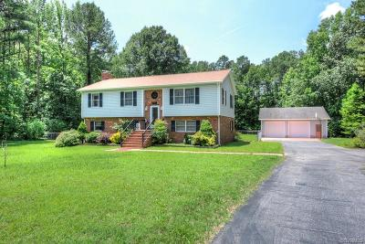 Single Family Home For Sale: 204 Rustic Drive
