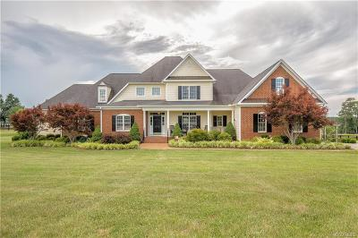 Powhatan County Single Family Home For Sale: 2781 Windy Meadow Lane
