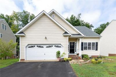 Henrico Single Family Home For Sale: 9521 Meadowview Road