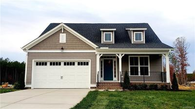 Chesterfield Single Family Home For Sale: 8800 Fishers Green Court