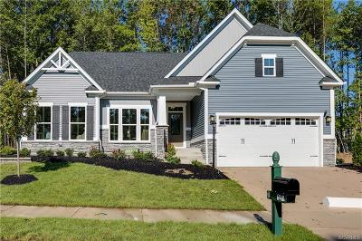 Chesterfield Single Family Home For Sale: 17801 Twin Falls Lane