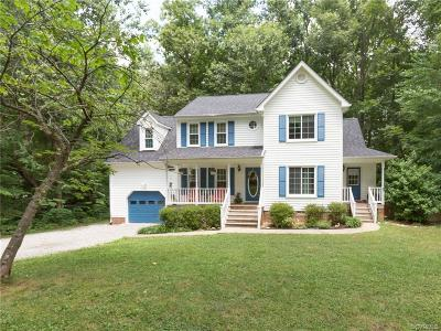 Chesterfield Single Family Home For Sale: 9536 Waterfall Cove Drive