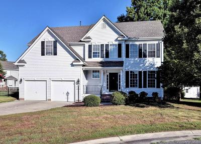 Isle Of Wight County Single Family Home For Sale: 13177 Duck Cove Court