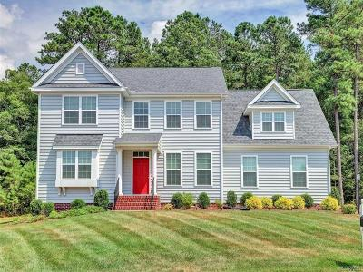 Single Family Home For Sale: 11207 Longtown Place