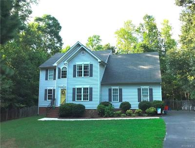 South Chesterfield Single Family Home For Sale: 10454 Chesdin Ridge Drive