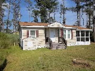 Mathews Single Family Home For Sale: 87 Hobday Street