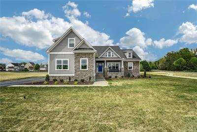 Hanover County Single Family Home For Sale: 13185 Luck Brothers Drive