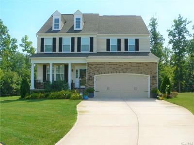Single Family Home For Sale: 6713 Swanhaven Drive