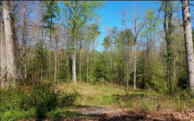 Land For Sale: 3052 Mountclair Road