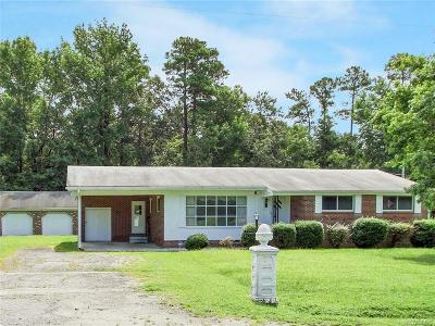 Sussex County Single Family Home For Sale: 10113 Birch Island Road