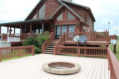 Farmville Single Family Home For Sale: 535 Buffalo Junction Road