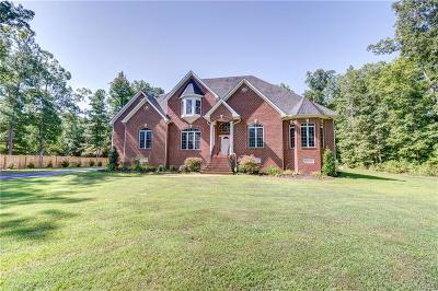 Chesterfield County Single Family Home For Sale: 19711 Genito Road