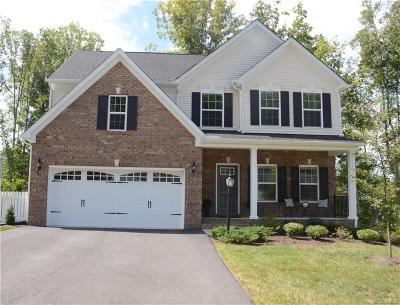 Chesterfield County Single Family Home For Sale: 1030 Water Beech Road