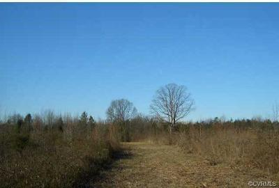 Commercial For Sale: 50 Acres, Patrick Henry Highway