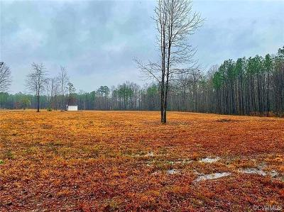 Dinwiddie Land For Sale: 17600 Lebanon Road