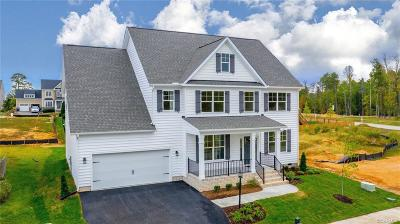 Chesterfield County Single Family Home For Sale: 16025 Lost Crop Drive