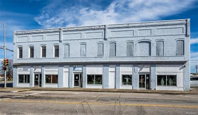 Hopewell Commercial For Sale: 101 S Main Street
