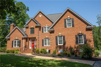 Henrico County Single Family Home For Sale: 11621 Long Meadow Drive