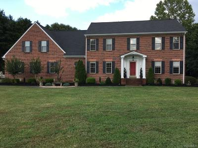 Hanover County Single Family Home For Sale: 9396 Powhickery Court
