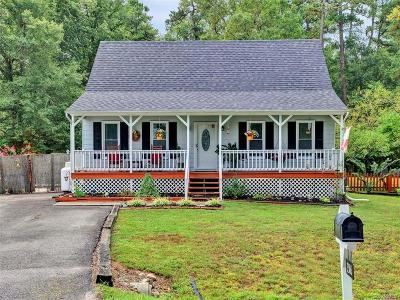 Chesterfield County Single Family Home For Sale: 3506 Julep Drive