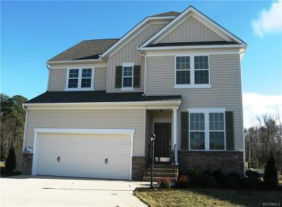 Chesterfield County Single Family Home For Sale: 18277 Twin Falls Lane