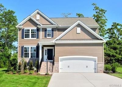 Chesterfield County Single Family Home For Sale: 18260 Twin Falls Lane