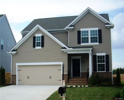 Chesterfield County Single Family Home For Sale: 6430 Doyles Trail