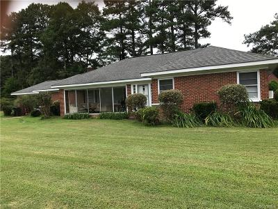 Sussex County Single Family Home For Sale: 132 S County Drive