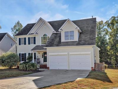 Chesterfield Single Family Home For Sale: 7943 Hampton Meadows Lane
