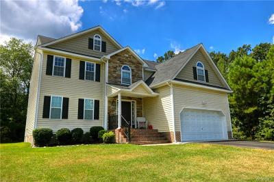 Chesterfield County Single Family Home For Sale: 8600 Proctors Run Drive