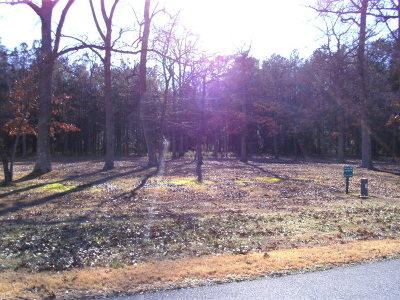 Greenbackville, Horntown Residential Lots & Land For Sale: 39 Corbin Hall Ln