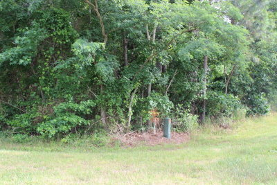 Residential Lots & Land For Sale: 128 Octopus