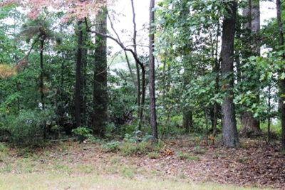 Residential Lots & Land For Sale: 58 Trident Ct