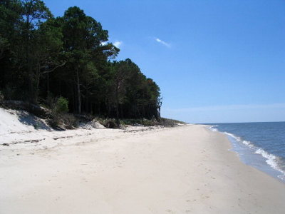 Cape Charles, Capeville, Kiptopeke, Cheriton Residential Lots & Land For Sale: Lot 10a1 Sand Hill Dr