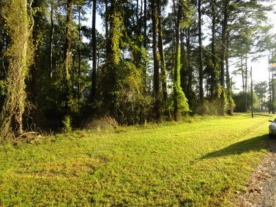 Captains Cove Residential Lots & Land For Sale: Lot 1162 Aft Ct